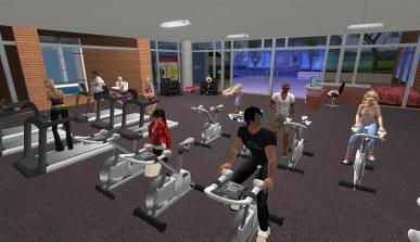 Second Life – Virtual Fitness Centres: What's it allabout?